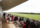 A Day at the Races for Business Micros